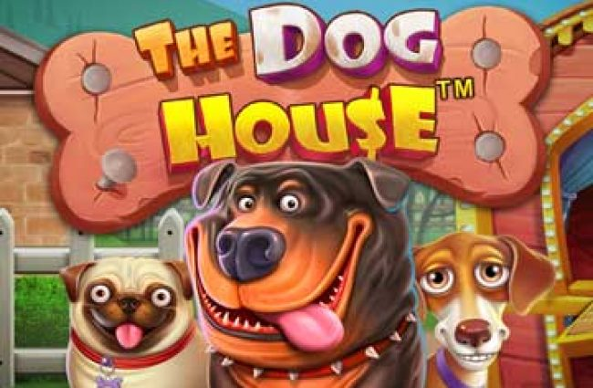 the dog house game